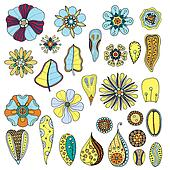 set of flowers. Illustration