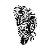 decorative silhouette pine cone with pine needles