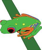 frog on a twig