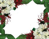 Christmas Frame Flowers and ribbon