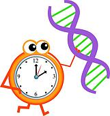 dna time