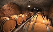 cellar II