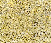 Seamless Popcorn Background