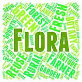 Flora Word Indicates Plant Life And Areas