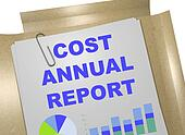 Cost Annual Report business concept