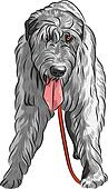 vector dog Irish Wolfhound breed