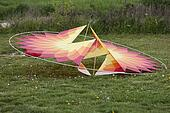 colorful kites on the lawn