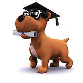 3d Graduate puppy