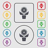 Flowers in pot icon sign. Symbols on the Round and square buttons with frame.