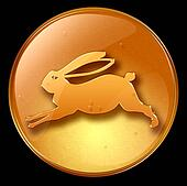 Rabbit Zodiac icon
