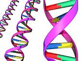 Illustration of DNA double helix