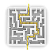 Path through labyrinth