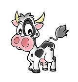 Small cow