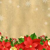 Christmas Card With Poinsettia