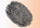 Very Detailed FingerPrint