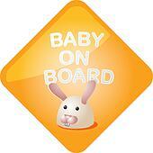 Baby on board bunny
