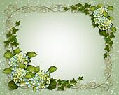 Wedding invitation Ivy and Hydrangea