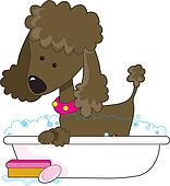 Poodle Bath Brown