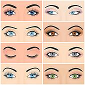 Set of female eyes and brows image with beautifully fashion design