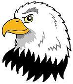 American eagles head