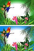 Parrot Frame