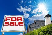 House For sale - Big Chrome Billboard