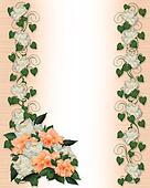 Ivy border invitation hibiscus peony