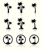 Palm trees, exotic holidays on beac