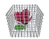red rose in birdcage