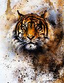 tiger collage on color abstract  background,  rust structure