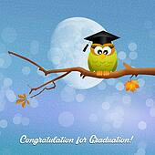 owl graduate on branches