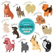 dogs and puppies depicting different fur color and breeds