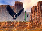 Eagle flight over the desert