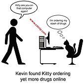 Kitty drugs