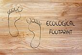 ecological footprint, ecotourism and environmental awareness