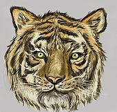 cg painting tiger head