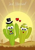 Cactus couple in love
