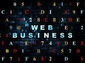 Web design concept: Web Business on Digital background