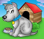 Grey dog in front of kennel