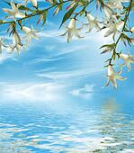 Summer landscape. bell Flower