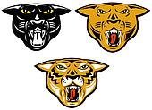 Three large big cat heads