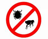 Prohibition sign for fleas and ticks on white background