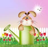 bunny in watering can