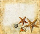 Starfish and Shells on a Grunger Background