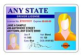 Female drivers license