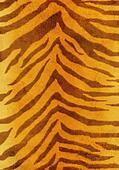 Grunge background - fur of a tiger