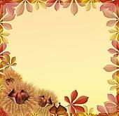Chestnut frame