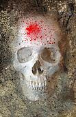 Scary Skull 3