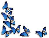 Minnesota flag butterflies