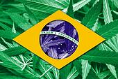 Brazil Flag on cannabis background. Drug policy. Legalization of marijuana